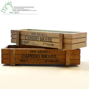 Chậu gỗ trồng sen đá, chậu gỗ, chậu gỗ mini
