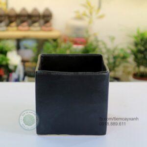 chậu sứ vuông, chậu sứ vuông để bàn, chậu sứ vuông đen, chậu sứ vuông mini