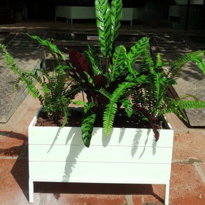 chậu nhựa kẻ chỉ composit, Chậu nhựa composit, chậu nhựa trồng ban công, chậu trồng ban công đẹp, chậu nhựa trồng hoa, chậu nhựa trồng cây