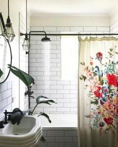 Cây xanh phòng tắm, trang trí cây xanh trong phòng tắm, trồng cây trong phòng tắm, phòng tắm trồng cây gì